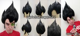 Vegeta from Dragonball Z  by