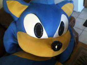 Sonic the Hedgehog from Sonic the Hedgehog Series worn by Surferbrg