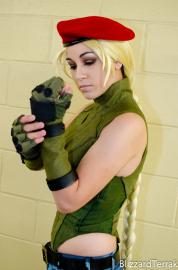 Street Fighter II photographed by